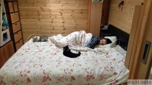 Minu kassi siin voodis siis nüüd põõnab?